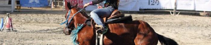 equitazione_color
