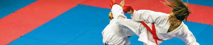 taekwondo_color
